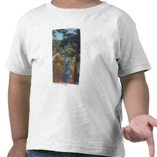 Denver Mountain Park, CO - Bear Creek Canyon T Shirt