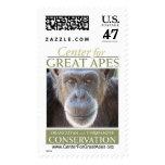 Denyse Postage Stamp