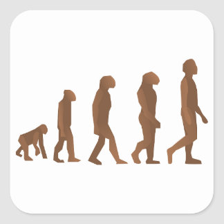 Depiction of the Evolution of Man Square Sticker