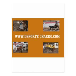 Deport Charro Postcard