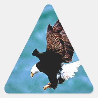 Depredador sólido del pájaro del águila calva del pegatina triangular