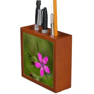 Deptford Pink Wildflower Floral Desk Organizer