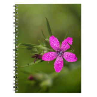 Deptford Pink Wildflower Floral Notebook