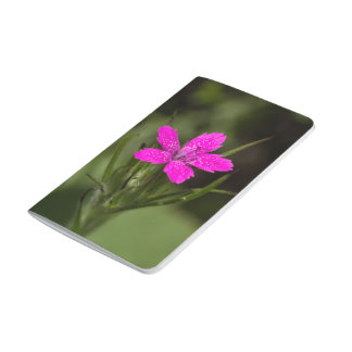Deptford Pink Wildflower Floral Pocket Journal