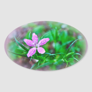 Deptford Pink Wildflower Oval Sticker