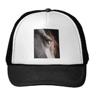 Depth Trucker Hat