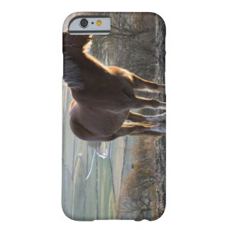 Derbyshire, England Barely There iPhone 6 Case