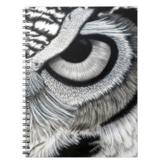 Derecho 2 del ojo del búho de 2 notebook