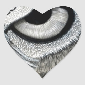 Derecho 2 del ojo del búho de 2 pegatina en forma de corazón