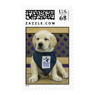 Derecho Stamp