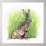 Derechos del conejo de Jack Impresiones
