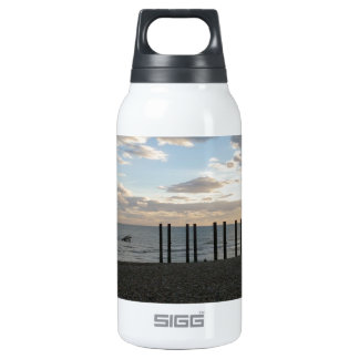 Derelict West Pier Brighton Insulated Water Bottle
