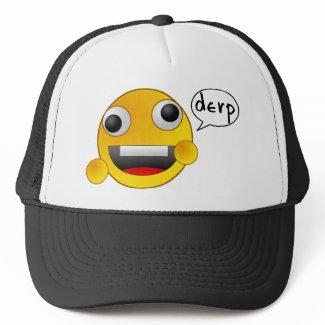 Derp Hat hat