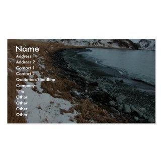Derrame de petróleo Unalaska 2004 del m v Selendan Plantilla De Tarjeta De Negocio