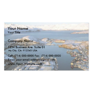 Derrame de petróleo Unalaska 2004 del m v Selendan Tarjeta De Visita