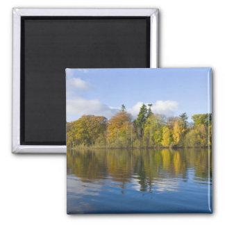 Derwentwater, distrito del lago, Cumbria, Inglater Imán Para Frigorifico