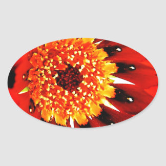 DES hermoso de los colores de Digitaces de la falt Calcomania De Oval Personalizadas