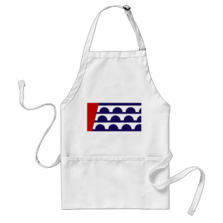 des moines city flag united state america iowa adult apron