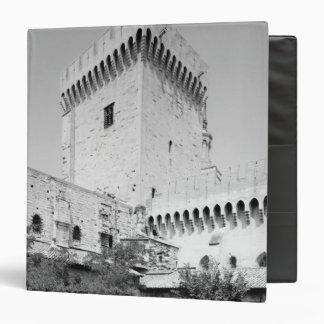 DES Papes, Palais Vieux de Palais de Benedicto XII
