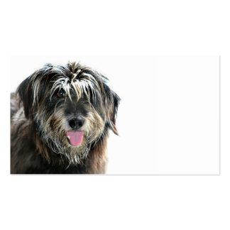 Desafío de los groomers del perro plantillas de tarjeta de negocio