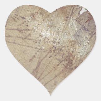 desaliñado en la tierra mojada pegatinas de corazon