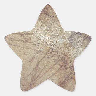 desaliñado en la tierra mojada calcomanías forma de estrella personalizadas