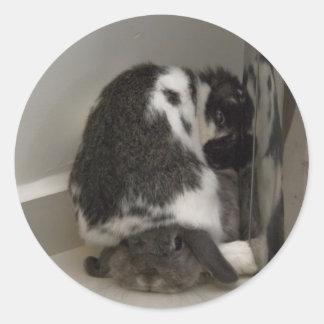 Desaprobación del conejito (pegatina)