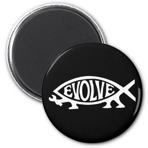 Desarrolle los pescados imán redondo 5 cm