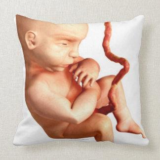 Desarrollo embrionario almohada
