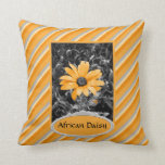 Desaturated Spring Flash African Daisy Photograph Pillows