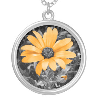Desaturated Spring Flash African Daisy Photograph Round Pendant Necklace
