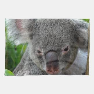 Descansando, koala feliz toallas