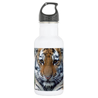 Descanse y recargue para el tigre grande Cub de un