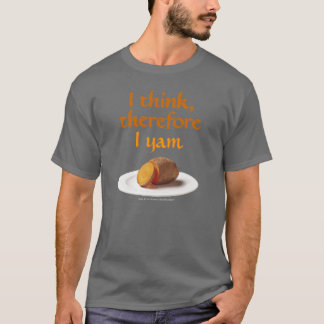 Descartes Pun T-Shirt