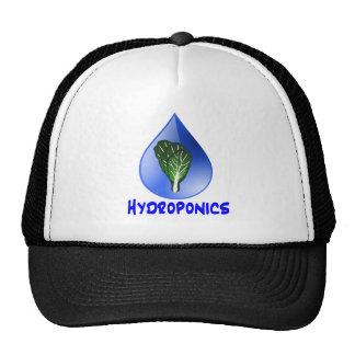 Descenso azul del lema del hidrocultivo con el grá gorro