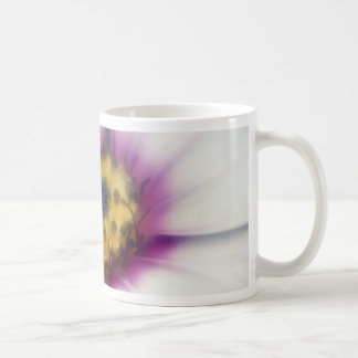 Descenso de rocío de la margarita tazas de café