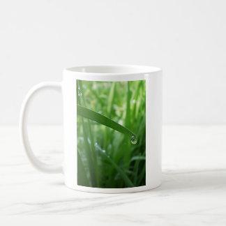 descenso de rocío tazas de café