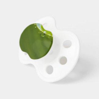 Descenso del agua de la hoja de Lotus del verde Chupete De Bebé