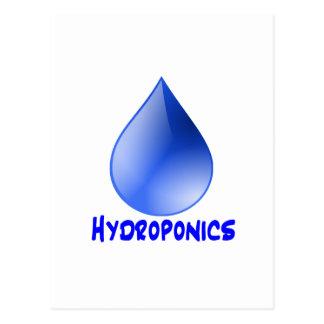 Descenso del agua del logotipo del hidrocultivo e postal