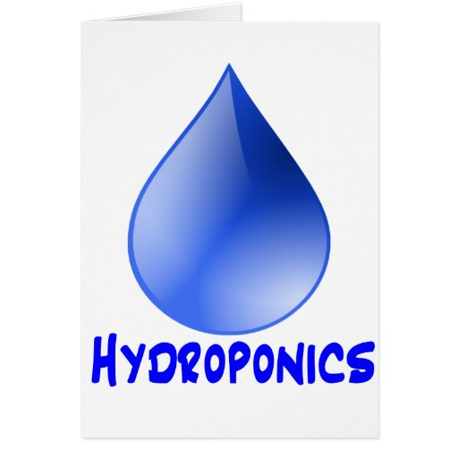 Descenso del agua del logotipo del hidrocultivo e tarjeta pequeña
