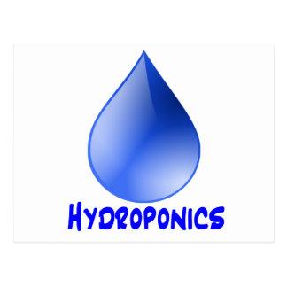 Descenso del agua del logotipo del hidrocultivo e tarjeta postal
