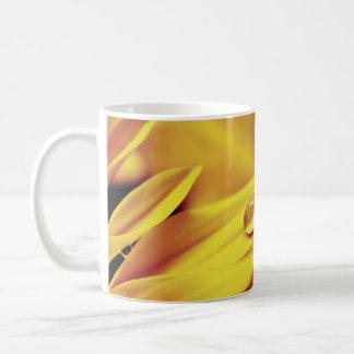Descenso del agua en la flor amarilla tazas de café