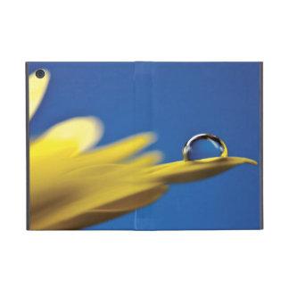 Descenso del agua en la flor iPad mini cobertura