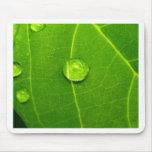 descenso del agua en las hojas alfombrillas de ratones