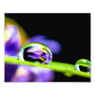 Descenso macro del agua en la flor de la púrpura fotografía