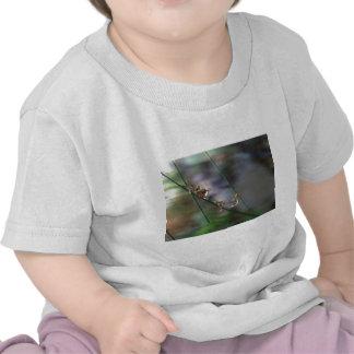 Descensos de la alegría camiseta