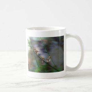 Descensos de la alegría tazas de café