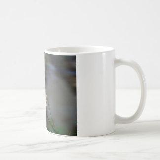Descensos de la alegría taza de café
