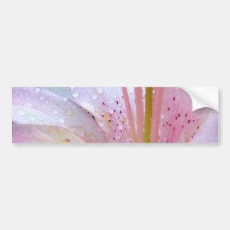 Descensos de rocío en lirio rosado pegatina de parachoque