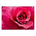 Descensos de rocío en tarjeta de felicitación colo